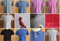 Lote Camisetas Pólo