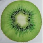 Cama Petfruit Kiwi